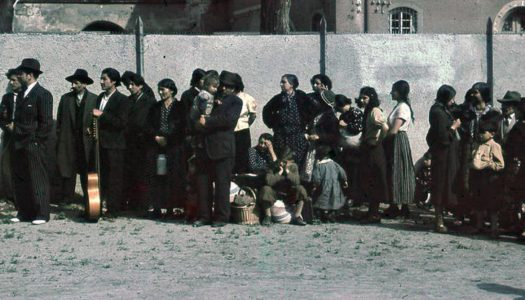 Simpozij Genocid nad Romi