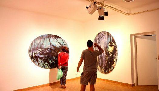 Fotografije: Otvoritev razstave Roža ljubezni, Brina Torkar