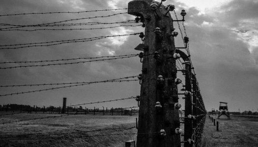 Branimir Ritonja: Auschwitz