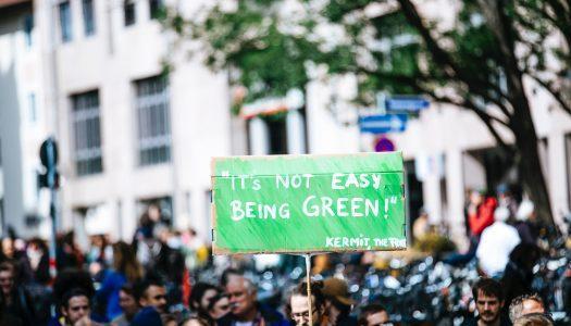 #GREENFLUENCERS – Mladinski delavci za zeleno prihodnost
